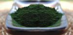 Organic Marine Phytoplankton powder